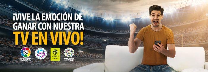 Inkabet Apuestas Deportivas en Vivo